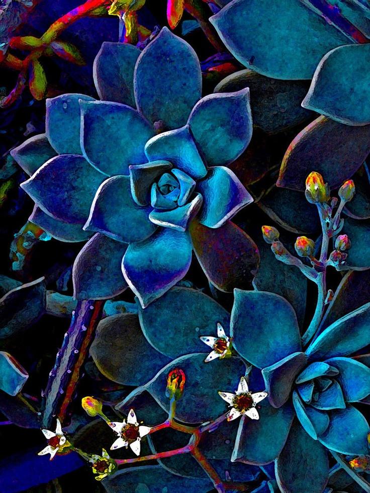 flowers by ~heshline  http://szellorozsa.deviantart.com
