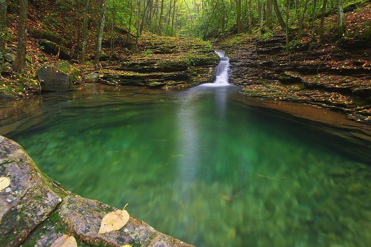 Devil S Bathtub Jefferson National Forest In Sw Virgina