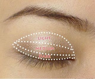 To apply the eyeshadow, I used this picture as a guide to help me know where to put what color.