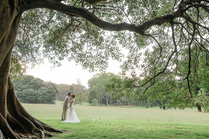 weddinggallery.net.au_The best Sydney wedding photography_weddinggallery.net.au_The best Sydney wedding photography_9