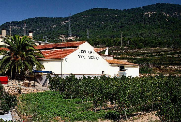 Wine tourism near Costa Dorada - https://bcn4u.com/wine-tourism-near-costa-dorada-4/