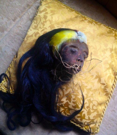 Genuine Human Shrunken Heads For Sale!