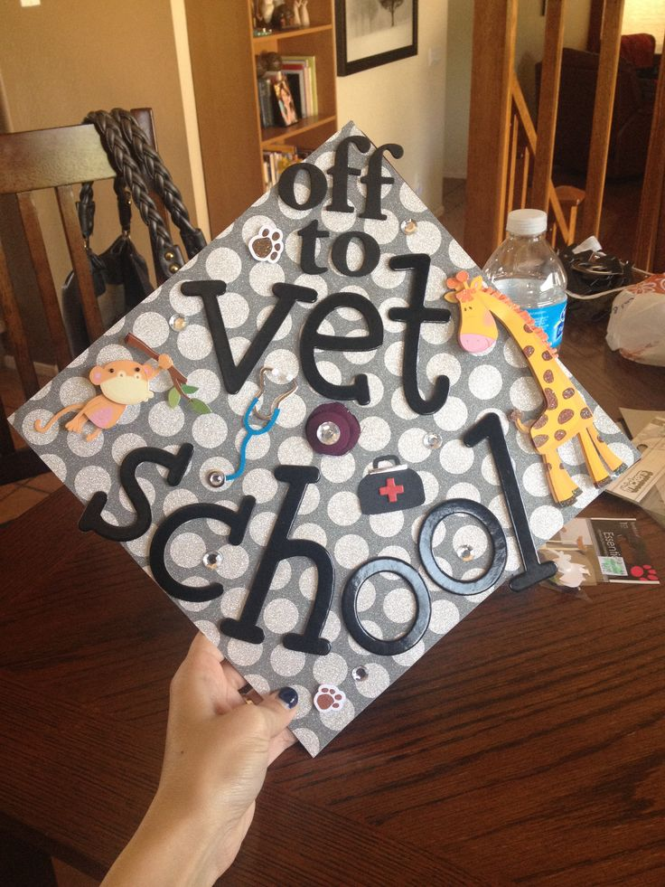 Vet School grad cap!!  So proud of my best friend! Can't wait till you take care of my dogs for me ;)
