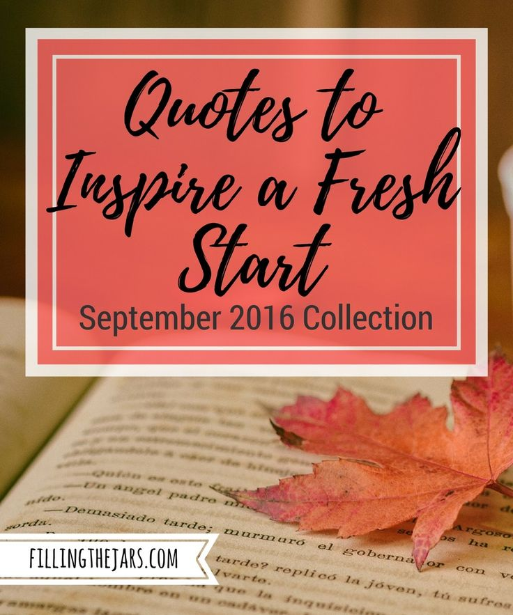 Fresh Love Quotes: 1000+ Ideas About Fresh Start On Pinterest