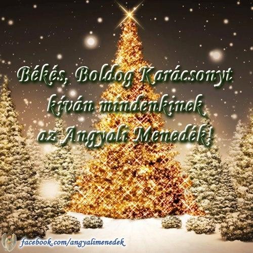 Békés, Boldog Karácsonyt kíván mindenkinek az Angyali Menedék! # www.facebook.com/angyalimenedek