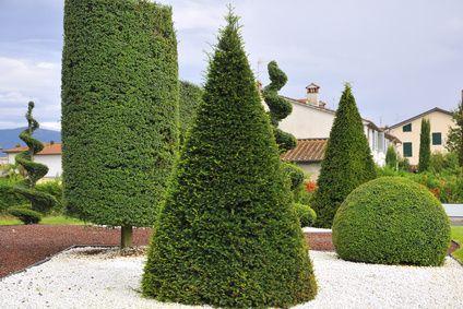 Per chi sogna un giardino fiabesco, vi portiamo un articolo pieno di spunti meravigliosi. http://blog.remmtools.com/segreti-della-potatura-tre-forme-interessanti-per-siepi-e-arbusti-da-giardino/