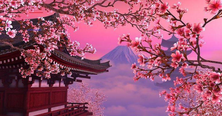 21 1080p Anime Sakura Wallpaper Download Anime Sakura Wallpaper Engine Free And Get All Of In 2020 Cherry Blossom Wallpaper Aesthetic Wallpapers Anime Cherry Blossom