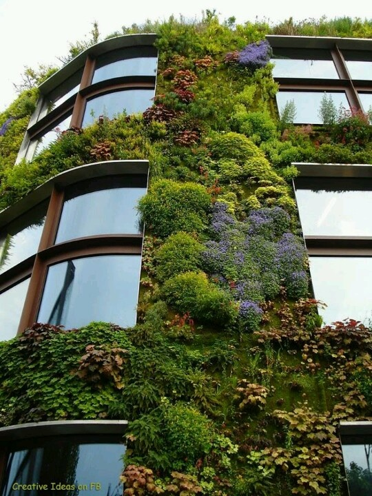 Vertical garden xx.... incredible!!!! I guess just the natural weather of rain keeps everything green?