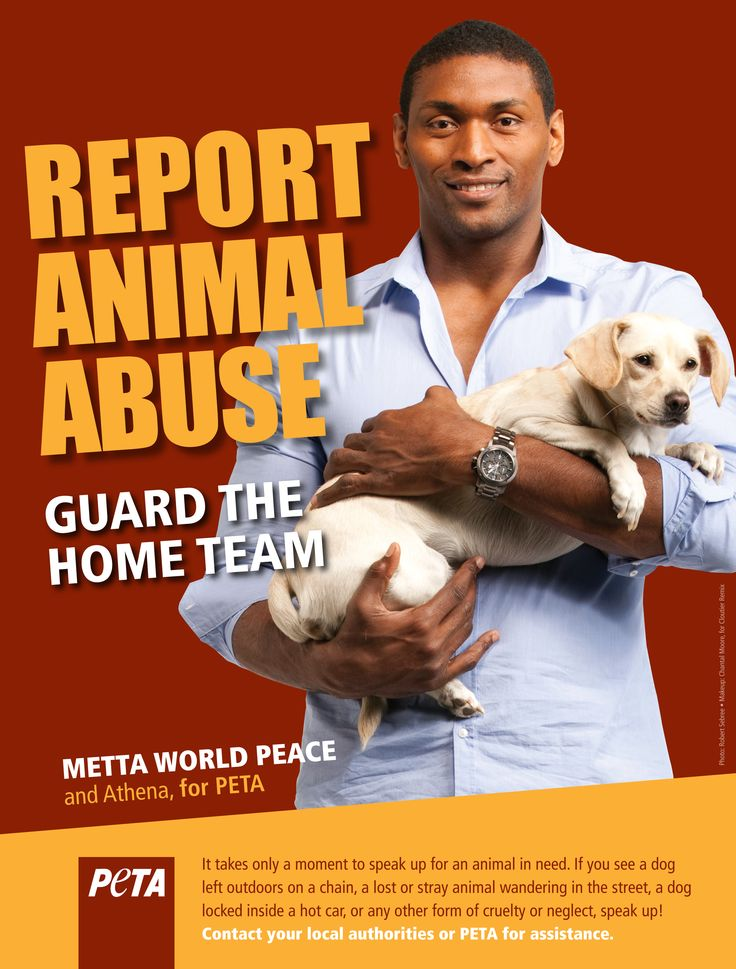 The New York Knicks' newest addition, Metta World Peace, teams up with PETA and canine friends Athena and Stella to urge fans always to report animal abuse. http://www.peta.org/features/Metta-World-Peace-Says-ALWAYS-Report-Animal-Abuse.aspx