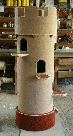Pvc pipe, cover in carpet or just paint....Kitty Castle!