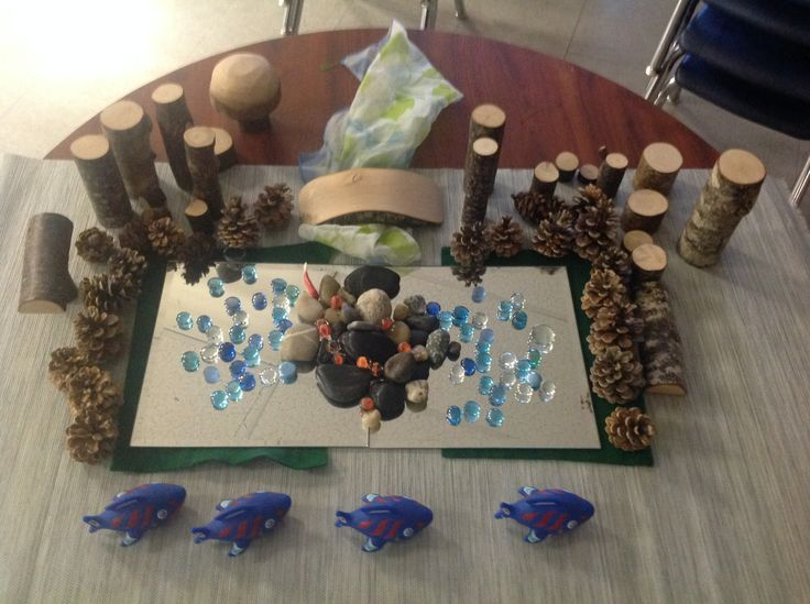 Our Classroom -Salmon Provocation