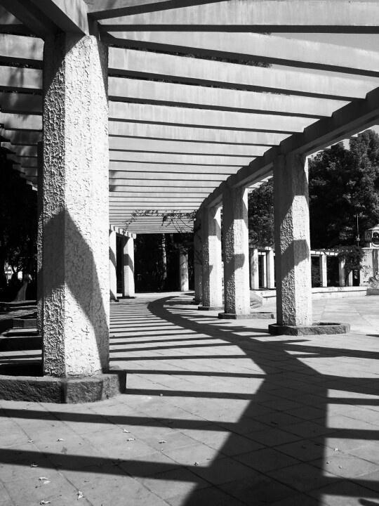 Parque Mexico. Mexico City