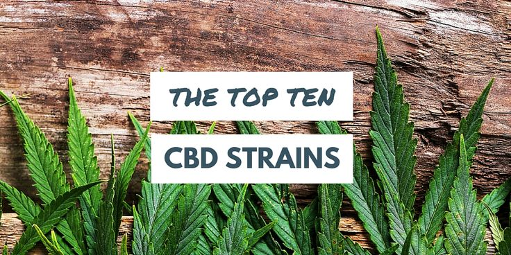 The Top Ten CBD Strains - #MMJ #CBD - http://www.marijuana.com/blog/news/2016/06/the-top-ten-cbd-strains/#utm_sguid=151367,bd6cfd72-7764-f6ae-8c28-8de869ea0c0d