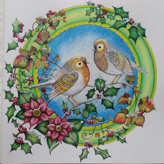 585 Best Johanna Basford Christmas Images On Pinterest