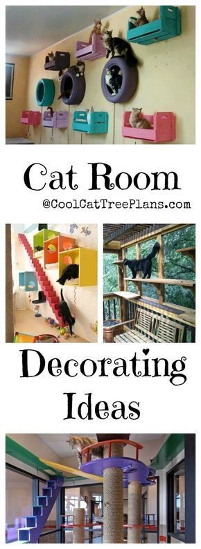 Cat Room Ideas. DIY cat decor for small spaces, apartments and homes of all sizes.