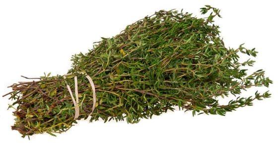 Elaceite esencial de tomillo, el cual contiene timol, una clase de compuestos naturales llamados \