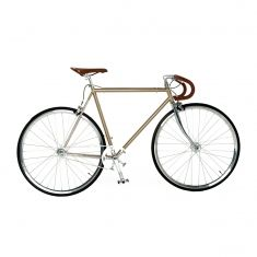 Vintage-style single-speed bicycle in Champagne