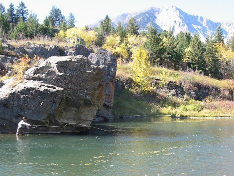fishing the crowsnest river