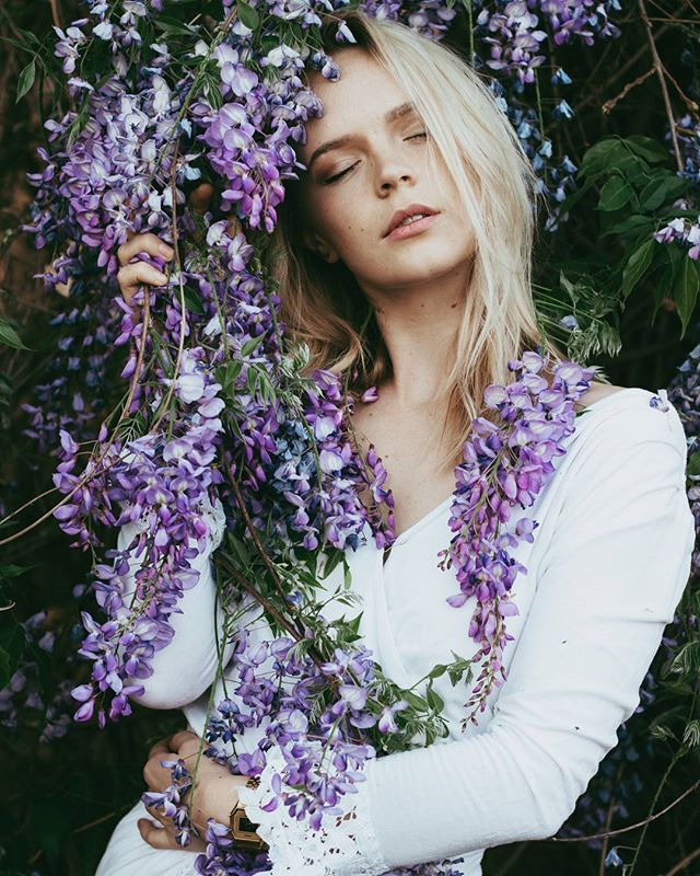 The Blonde Blogger On Wisterian Wolf Making  _____ AIRE & CAI