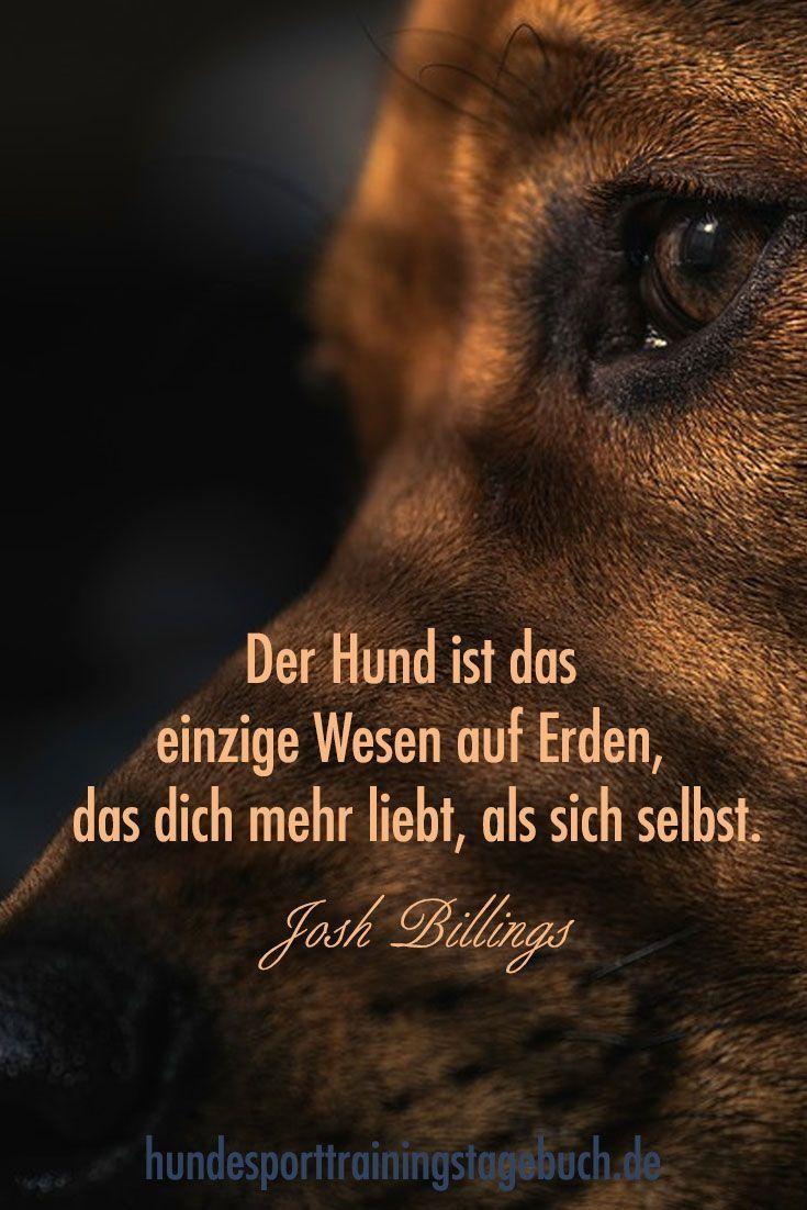 #Trainingstagebücher für den #Hundesport #Hunde #Agility #Obedience