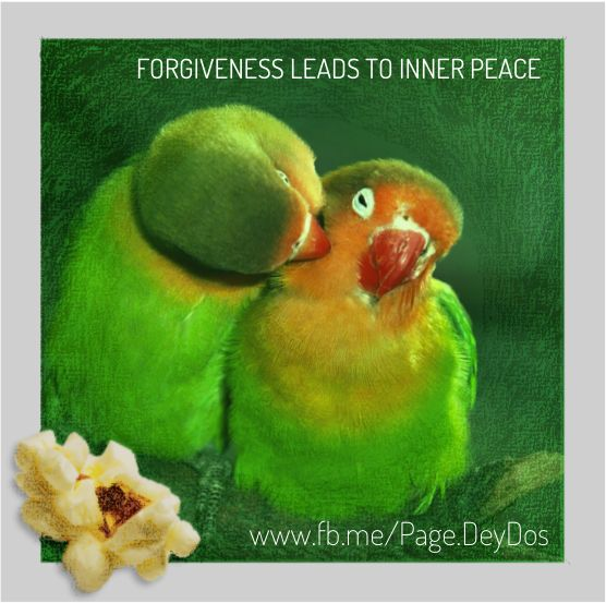 """Forgiveness leads to inner peace."" #PhotoPopcorns #DeyDos"