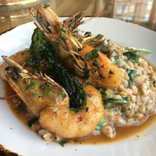 Shrimp a la Plancha Farro Risotto Wilted Baby Kale Crispy Basil. - Photo Credit: @blueducktavern - . . . . #risotto #shrimp #blueducktavern #dc #washingtondc #dcdining #dcfood - via Michelin Guide on #Instagram : Amazing #Travel Destinations - International #Holiday Tips - Dream #Vacations - Exotic Tropical Tourist Spots - Adventure Travel Ideas - Luxury #Hotels and Beautiful Resorts Pictures by Traveling247