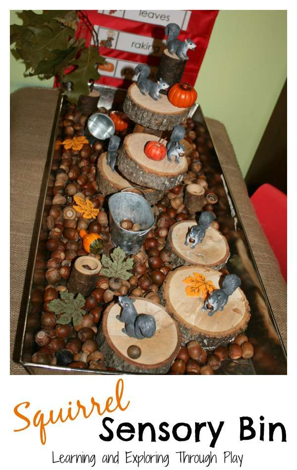 Bring Nature indoors and create a sensory bin perfect for the Autumn months!