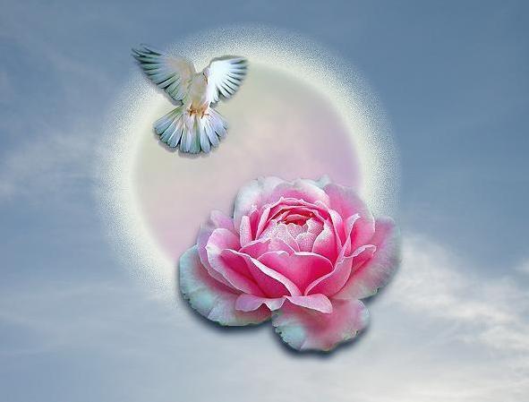 Медитация. Очищение сердца