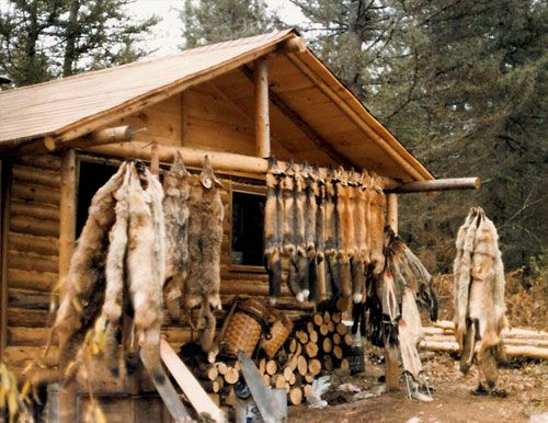 Old Trapper Cabins - grandpere made a living trapping & trading- mostly for rot gut whiskey