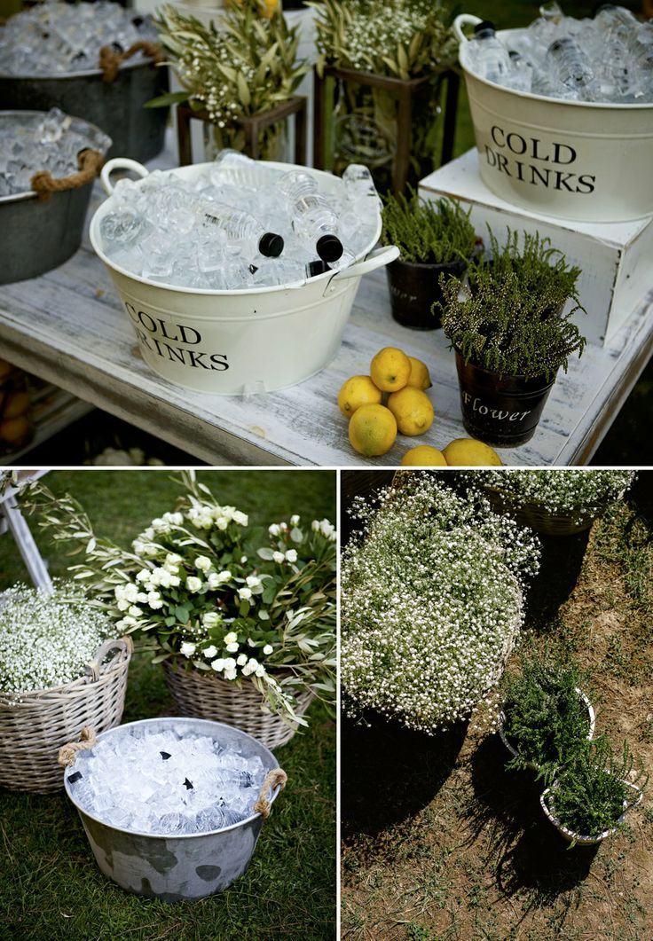 More lemons...natural herbs and flowers!