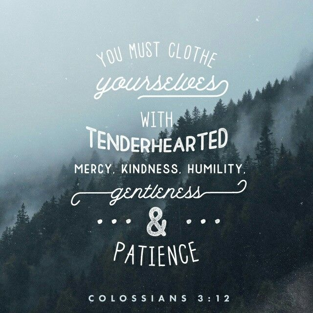 Todays Verse Of The Day Colossians Lets Walk Together Victorious Jesus Loves You And So Do I