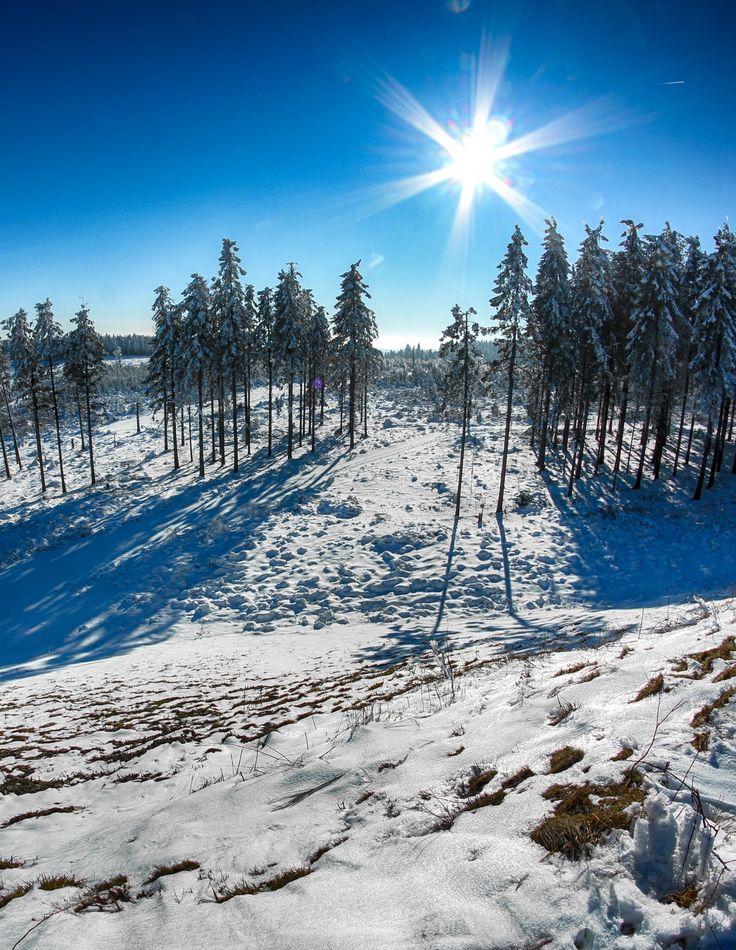 Wintersport im Sauerland: In #Willingen warten 16 km präparierten  Pisten mit Ski-Abfahrten von bis zu 2000 m Länge auf Ski- und Snowboardfahrer. | Foto: Y-SiTE