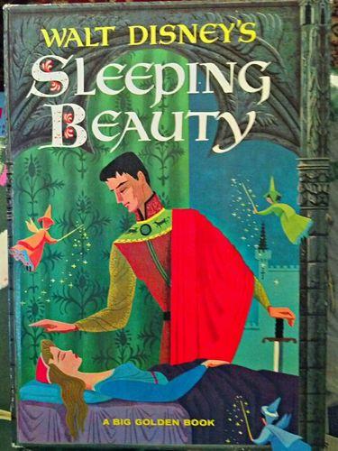 Disney Cruise Ship Engine Room: 78 Best Aurora Briar Rose AKA My Sleeping Beauty Images On