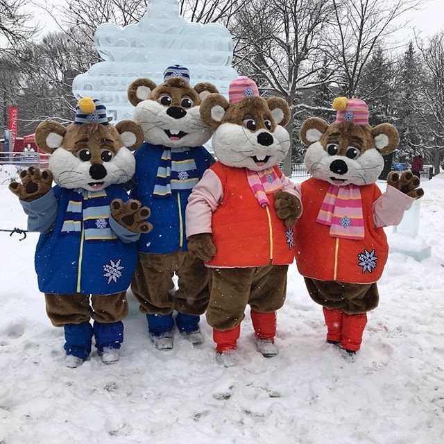 The famous Winterlude Ice Hogs. Cute family.  @igersottawa @ottawatourism. . . . . . #ottawa #canada #love #winterlude #613 #ottcity #winter #ontario #myottawa #instagood #igersottawa #ottawatourism #discoveron #cute #ilovemywinterlude #latergram #icehogs #mascots #snow #canadascapital #iphoneography