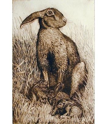 Small Hare & Leverets by Anna Ravenscroft