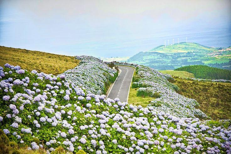Açores: dizem que o paraíso é mais ou menos assim. As 9 ilhas mais bonitas do mundo são portuguesas e despertam cada vez mais a atenção dos turistas.