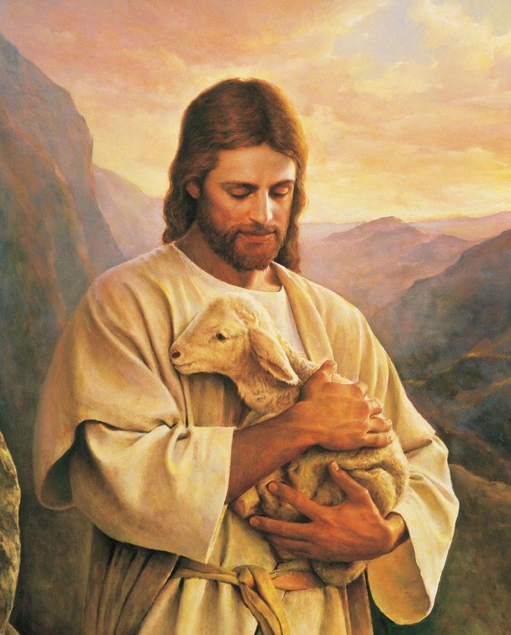 Details about JESUS HOLDING A LITTLE LAMB 8X10 PHOTO PICTURE CHRISTIAN ART