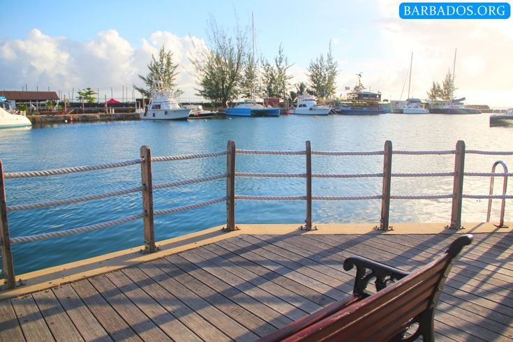 When you visit our capital city Bridgetown, take a moment to sit on the boardwalk and watch the catamarans and fishing boats. You might even spot a turtle!