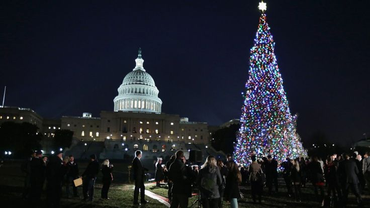 See Who's Going to U.S. Capitol Christmas Tree Lighting Ceremony in Washington, DC! Check out the 2016 lineup, tickets & vendors, and read ratings & reviews. Join our festival community.