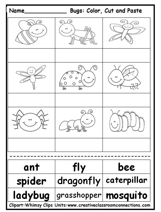 "Free ""Bugs"" cut and paste activity will challenge students to read and match vocabulary to pictures of bugs.  View a complete bug unit at: www.creativeclassroomconnections.com."