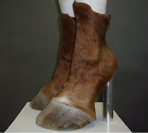 Regina wasn't one to beat a dead horse, but she did like to chop its feet off and turn them into boots. (from WTFPinterest.com)