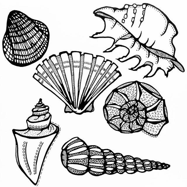 Day 26/31, subject: Sea Shells. Meedeinend op de golven, aanspoelend op het strand. #blackandwhite #creativebug #CBDrawADay #tekenen #draw #drawing #tekening #schelp #schelpen #seashells #seashell #doodles #31thingstodrawchallenge #creativelifehappylife #adrawingaday #pendrawing #illustration #art #linedrawing #lisacongdonclass #illustratie #creativelife #createeveryday