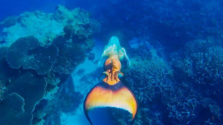 Mermaid Guardian Of The Sea