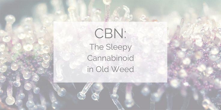 #CBN - The Sleepy Cannabinoid in Old Weed - #MMJ #Insomnia http://www.marijuana.com/blog/news/2017/03/cbn-the-sleepy-cannabinoid-in-old-weed/