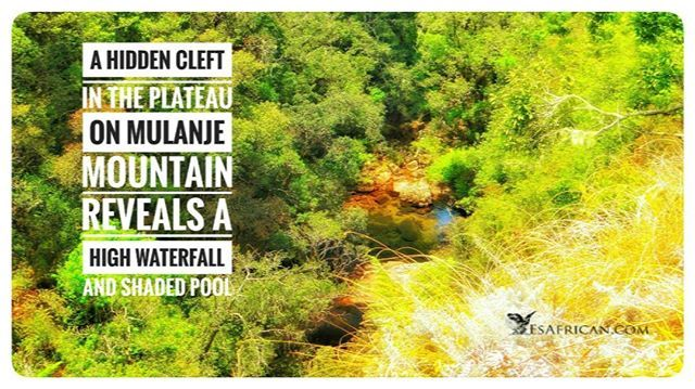 If sticking to the path you can walk close to the top of the waterfall above this pool and not notice.  Hidden by vegitation this #MountainPool is protected on three sides by high walls and a waterfall & on the other side by a long walk through the steam.  #MulanjeMountain ... #Malawi #Mulanje #Plateau #lichenyaplateau #fbp #tw #fb #MountainStream #MalawiPlaces