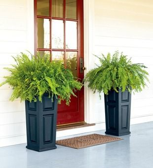 don't have a lot of room or sun? These tall skinny planters are a great idea next to a front door, or back door #designsolutionskgp #curbappeal