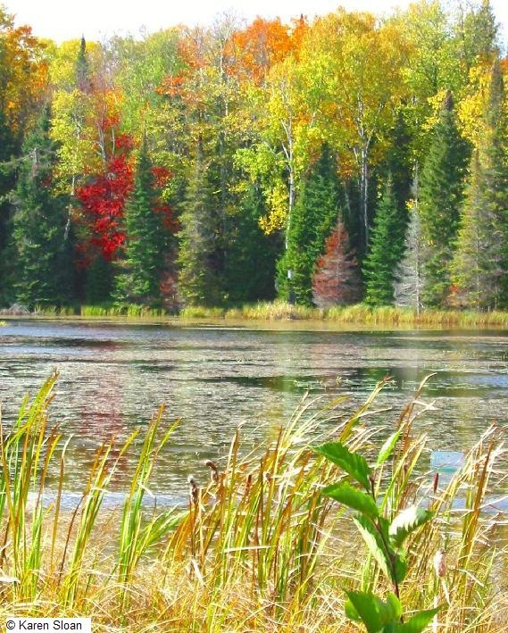 The natural & rugged beauty of the #Haliburton Highlands, Ontario, Canada.