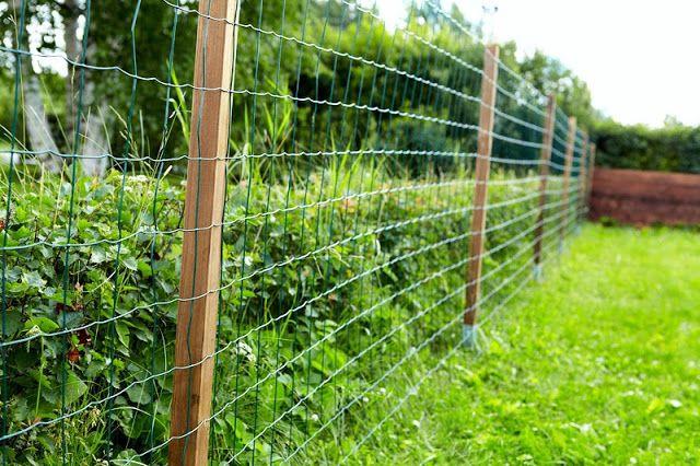Rintsikka: Puutarha-aidan rakentaminen