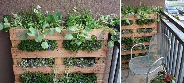 Great idea for a micro gardenGardens Ideas, Pallets Wall, Balconies Gardens, Pallets Gardens, Terraces Gardens, Housewarming Gift, Herbs Gardens, Small Spaces, Wall Gardens