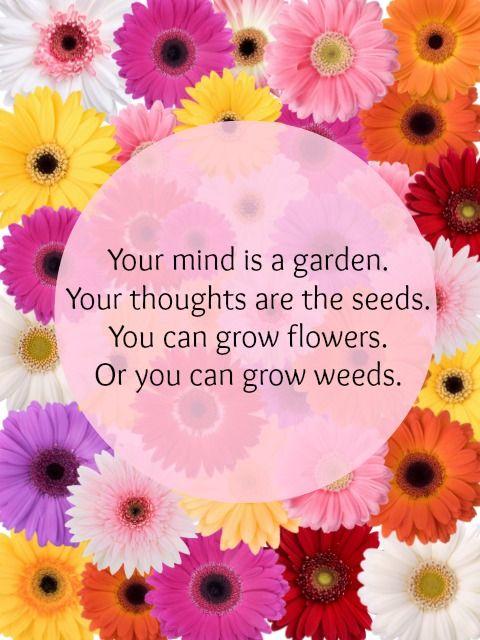 Your thoughts matter. Read more on my blog: http://findingjoyandbeauty.blogspot.fi/2014/01/soul-sunday.html